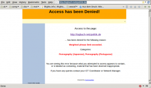 Page showing that a German political website has been blocked because it contains pornography (Japanese).
